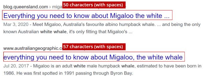 Search Result for Migaloo the white whale
