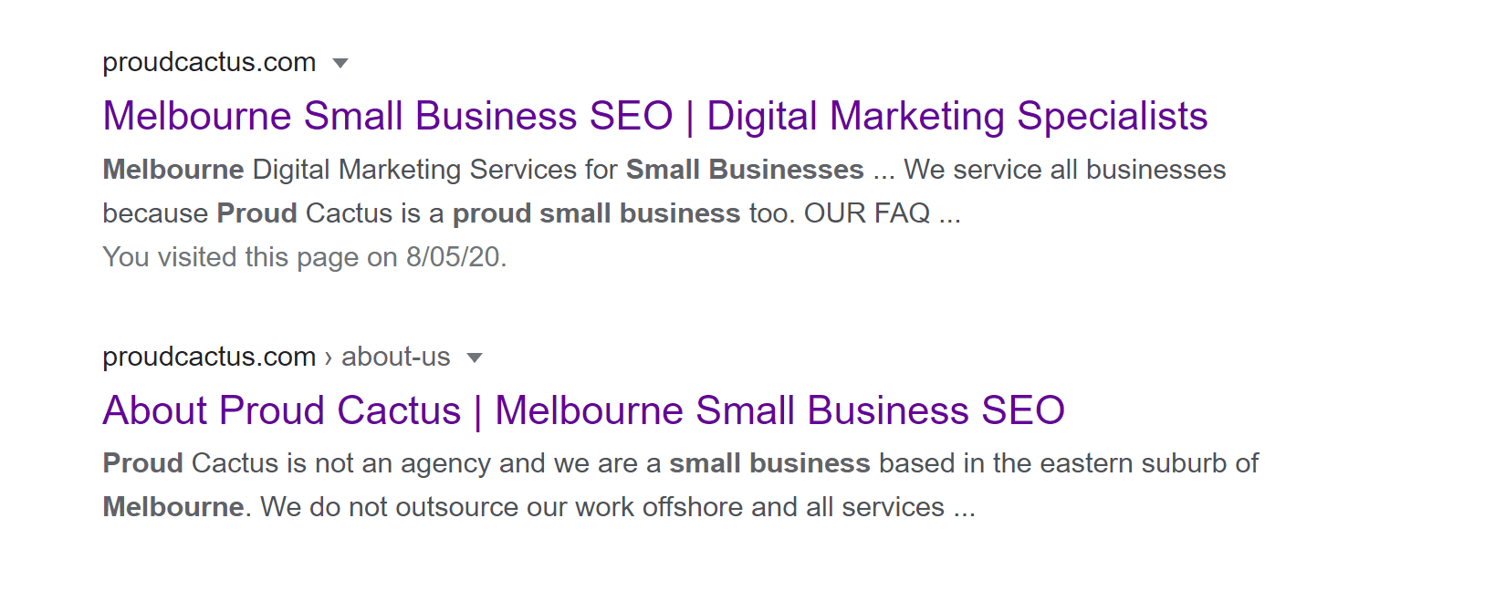 Search term 'Melbourne Small Business SEO' on Google