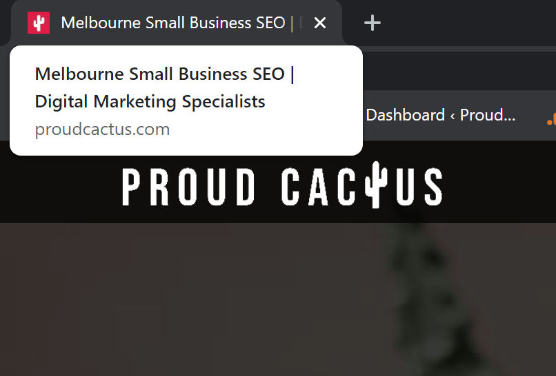 Melbourne Small Business SEO & Digital Marketing Specialists Title tag for Proud Cactus